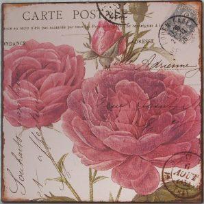 Skylt - Carte Postale