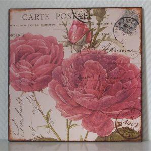 Skylt – Carte Postale